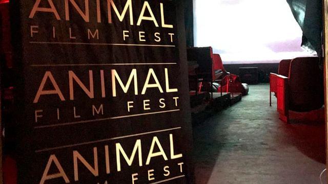 Animal Film Fest alista segunda edición en Morelia