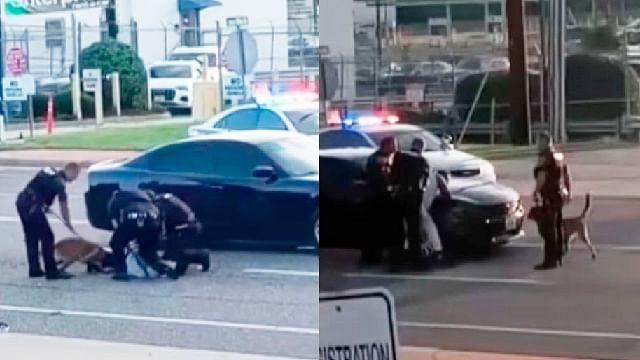Policías dejan que su perro muerda a un afroamericano mientras lo arrestan