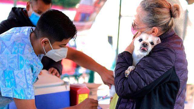 Continúa Jornada Nacional de Vacunación antirrábica en Michoacán