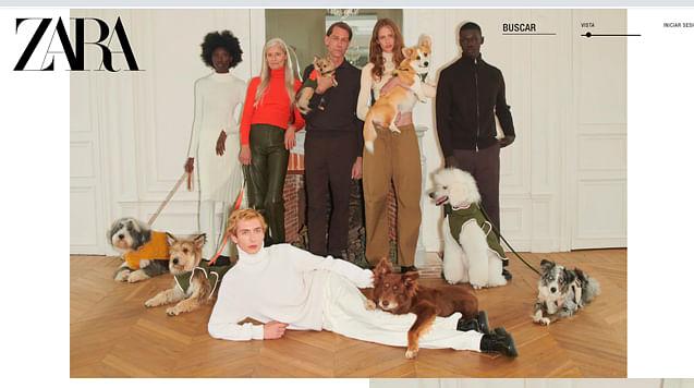 Tu perrijo, sin frío y a la moda; ZARA lanza colección desde $299