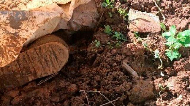 Hallan cadáver enterrado junto a cabaña abandonada en Michoacán