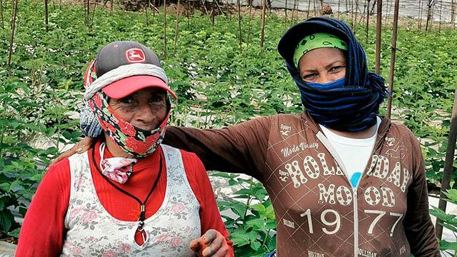 Gobierno de Zamora reconocerá la labor de las Mujeres Rurales