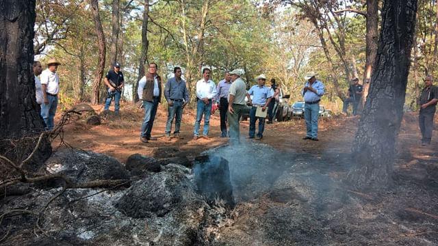 Unidad de todos, para frenar incendios y cambios de uso de suelo: Sedrua