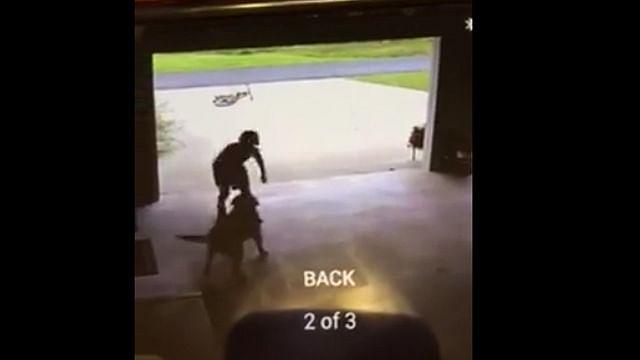 Video: Niño se mete a la casa de su vecina todos los días solo para abrazar a su perra