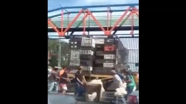 Video: Por escasez de alimentos, Venezolanos saquean un camión con pollos