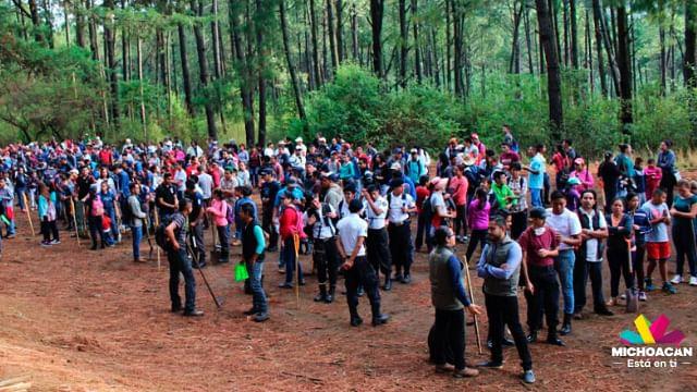 Anuncia Cofom actividades con motivo del Mes del Bosque