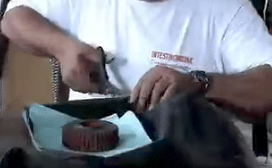 Fabrican carteras y billeteras con llantas usadas [Video]