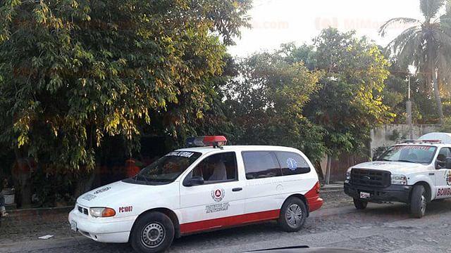 Abejas atacan a una familia en Apatzingán