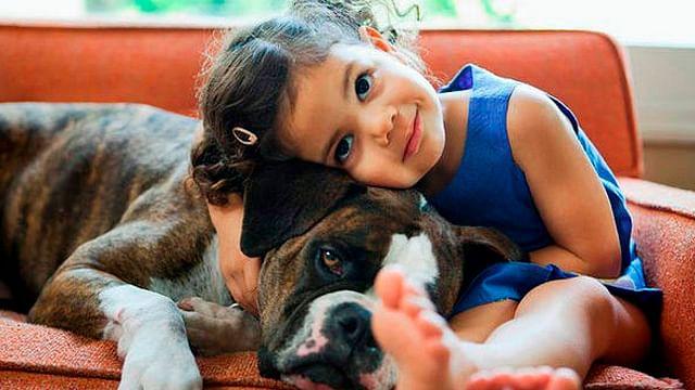 Tener un perro podría reducir los síntomas de asma en menores