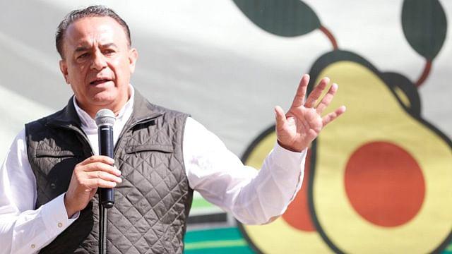 Aumenta 200% demanda de aguacate michoacano en Europa: Sedrua
