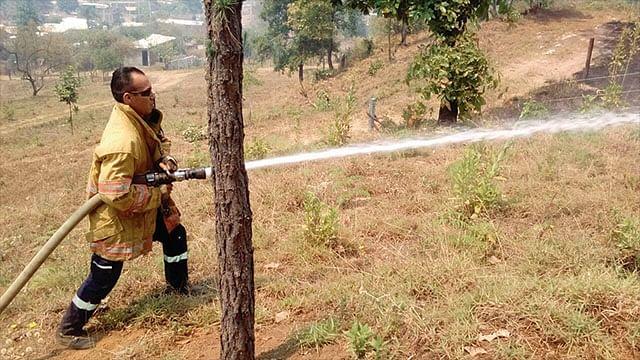 Controlan incendio en el Cerro del Punhuato en Morelia