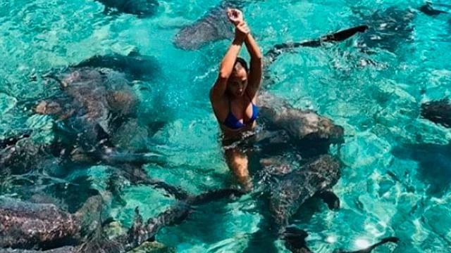 Modelo posa para fotografía y es atacada por un tiburón