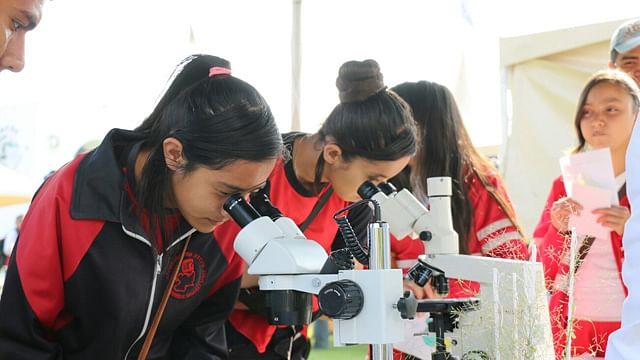 Arrancará UMSNH curso de verano de ciencia para niños y jóvenes