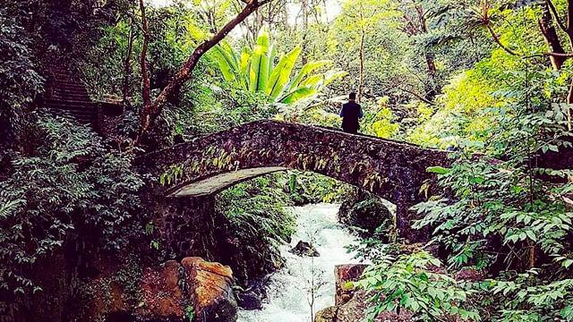 Parque Nacional de Uruapan tendrá recorridos nocturnos