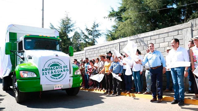 Sale primera carga de aguacate de Zitácuaro rumbo a Estados Unidos