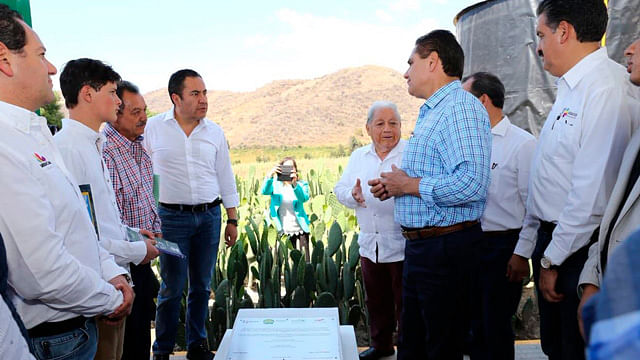 Inauguran planta para producir biogás a partir de nopal, en Zitácuaro