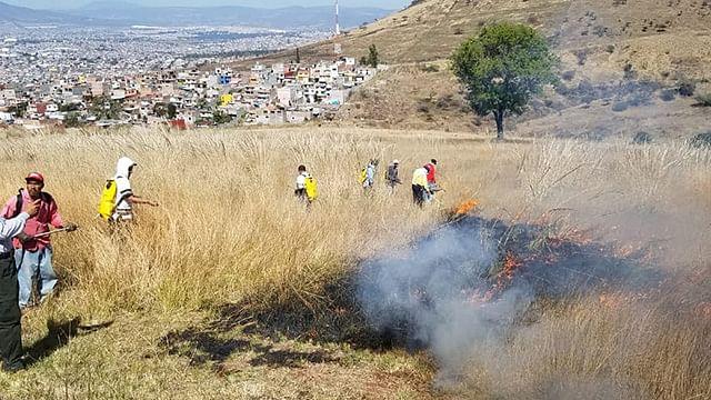 Fortalece Semaccdet prevención de incendios forestales en el Estado