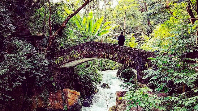 Parque Nacional de Uruapan ofrecerá recorridos nocturnos durante Semana Santa