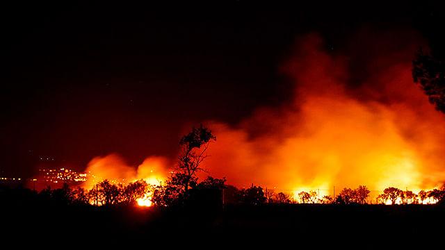 Erik Juárez Blanquet, hace unos días, aseguró que de los seis millones de hectáreas en áreas verdes con las que cuenta Michoacán, el ochenta por ciento del área forestal ha sido afectada (Foto: pixabay.com)