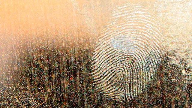 Gracias a huellas dactilares de INE se logra identificar 700 cadáveres