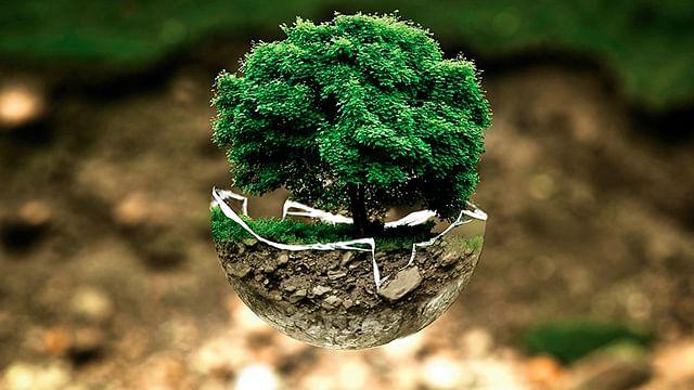 Cómo podemos enseñar a cuidar el medio ambiente a las nuevas generaciones