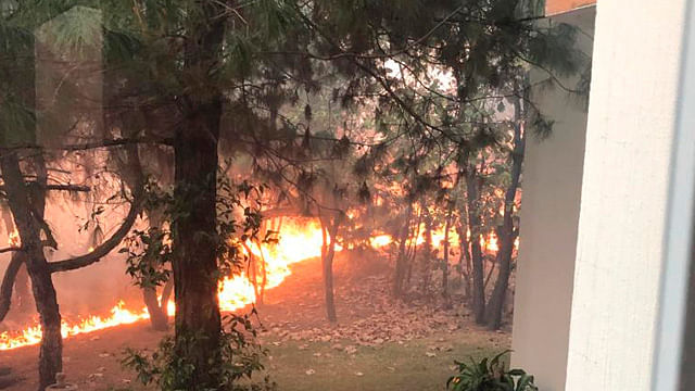Hasta el momento no se tiene una estimación respecto al avance debido a las condiciones complicadas del incendio (Foto: Captura)