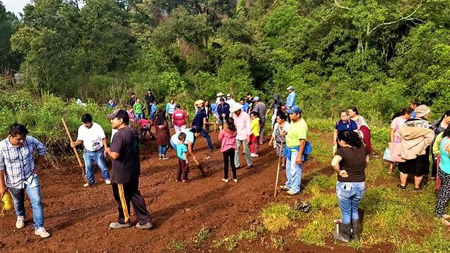 Inician campaña de reforestación de áreas verdes colonos antorchistas de Ario