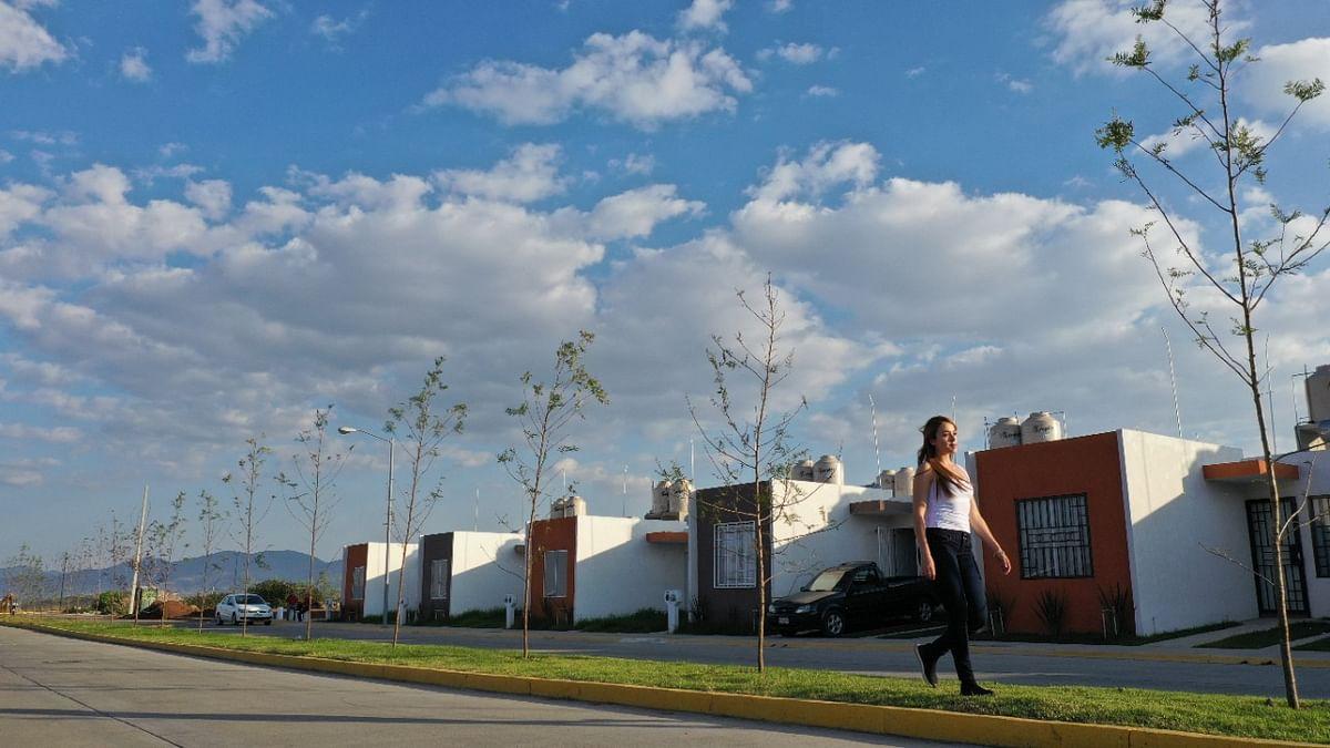 Grupo Herso reforestará 19 hectáreas en Villas del Pedregal; un árbol por cada hogar