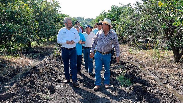 Sector de actividades primarias crece pese a pandemia: Alfredo Ramírez