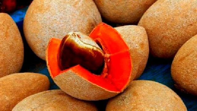 Michoacán es el quinto productor nacional de mamey