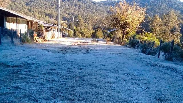 Michoacán: Mínima de 0 a 5°C y posibles heladas, en zonas montañosas