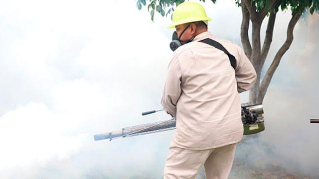 En última semana, 46 casos más de dengue en Michoacán