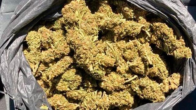 En colonia de Morelia, detienen a hombre con 425 gramos de marihuana