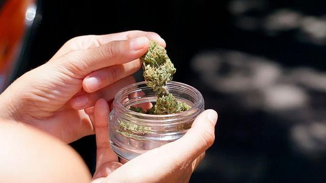 Diputados aprueban en lo general uso lúdico de la marihuana