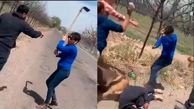 #LadyAzadon agrede a perros y fractura cráneo de joven que los defiende