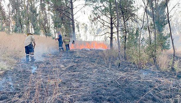Protección Civil, en alerta ante inicio de temporada de incendios forestales