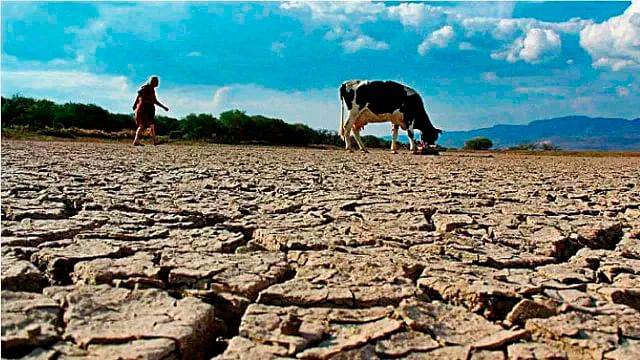 20 municipios los más afectados por la sequía en Michoacán: Conagua