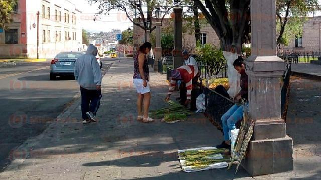 "Morelia: Reitera Arróniz prohibición de venta de ""palmas"" en vía pública"