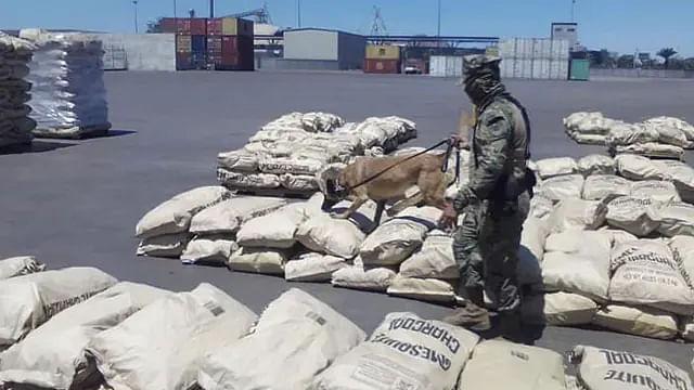 Marina asegura droga en puertos de Michoacán y Sonora