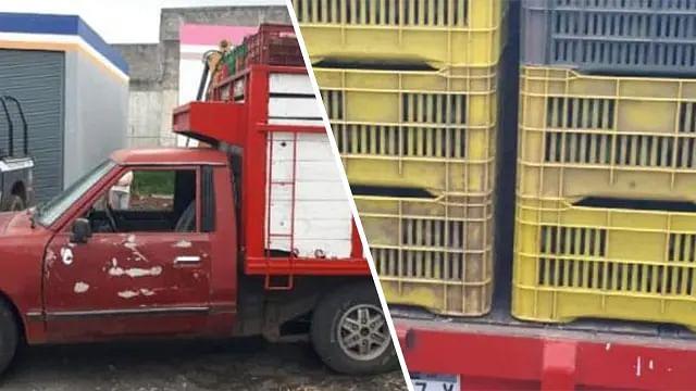 En Uruapan, detienen a uno con 1.9 toneladas de aguacate sin documentación