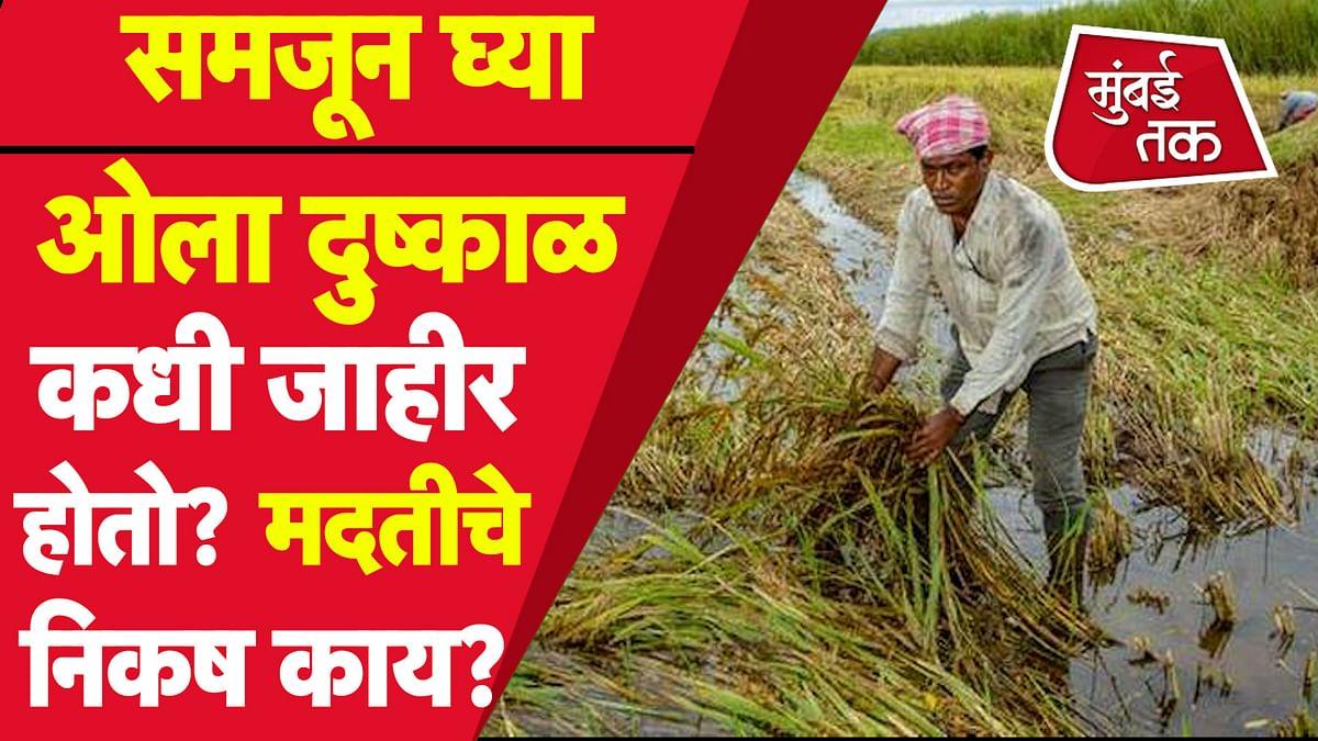 Marathwada Flood 2021 :  ओला दुष्काळ कोणत्या परिस्थिती जाहीर होतो? काय असतात मदतीचे निकष?