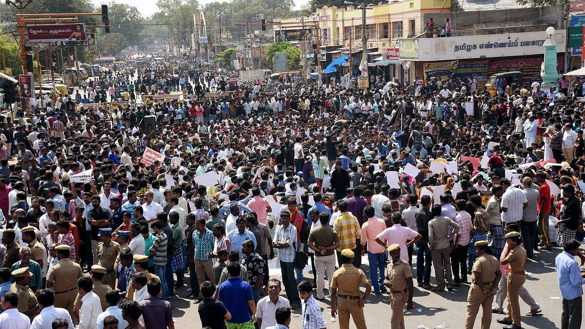 The Jallikattu issue and Tamil insecurity