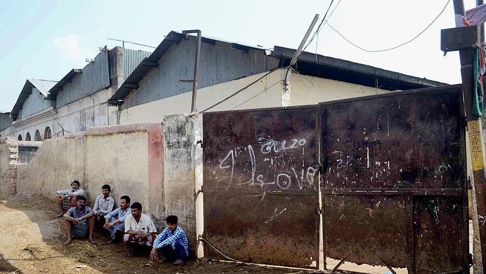 Yogi ushers in 'jungle raj' in Uttar Pradesh