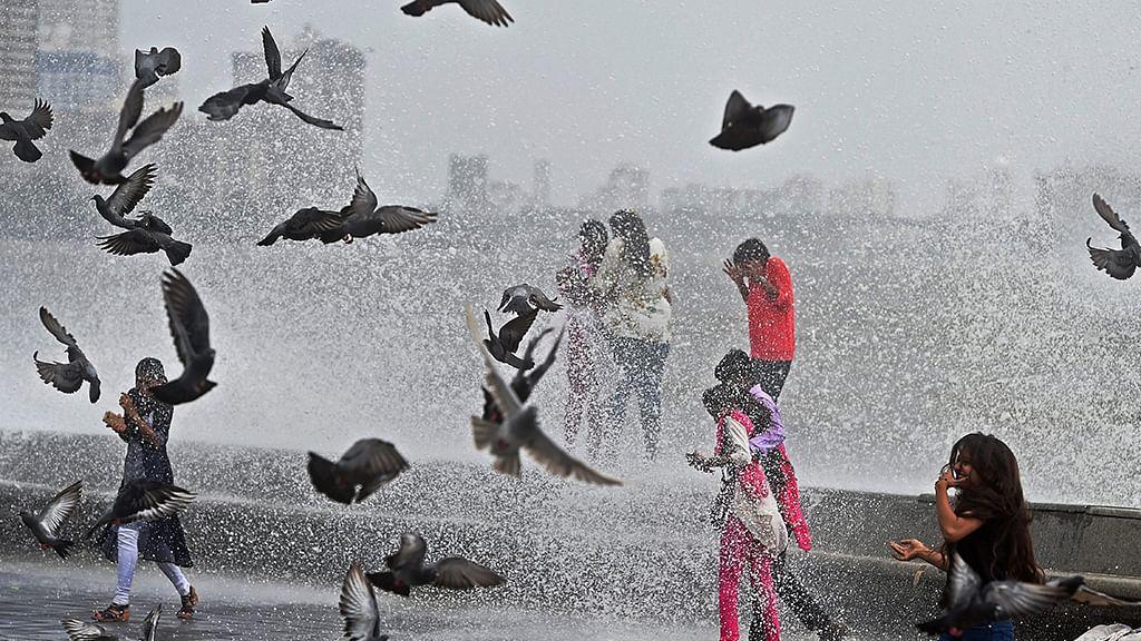 June 24: Away from Delhi, in pictures