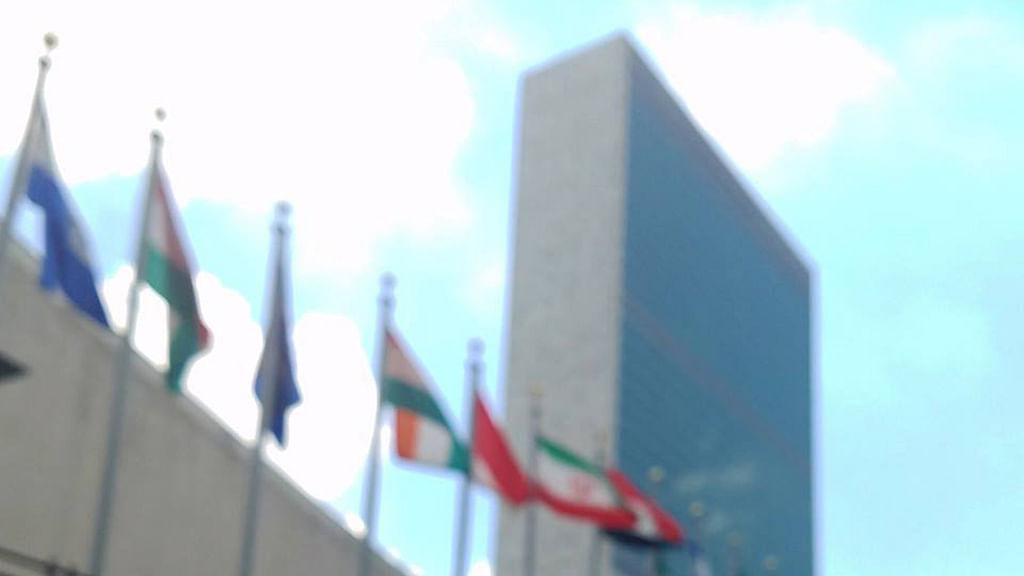 Halt use of capital punishment: UN on Nirbhaya convicts' execution