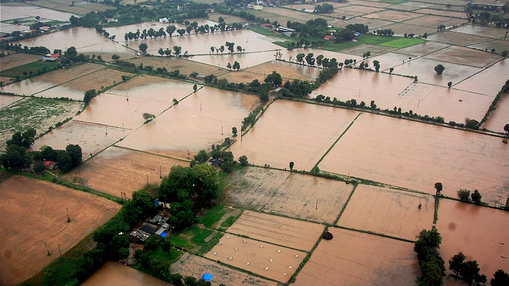 Everyone loves a 'good flood', hints CAG report
