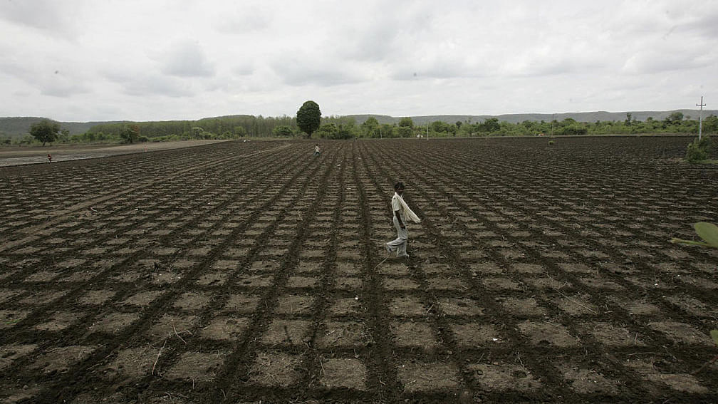 Climate change linked to 59,000 suicides in India over last 30 years