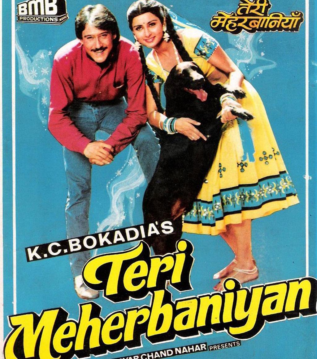 The Classic Bad Hindi Films You Must Watch,Front Door Easter Classroom Door Decorations