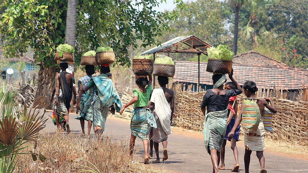 Spelling errors keep out 26 castes from reservation in Chhattisgarh