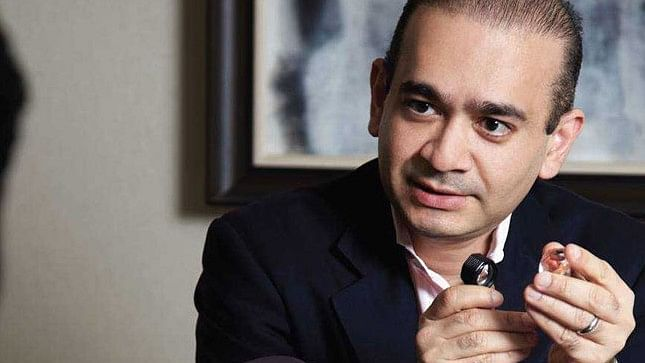 Nirav Modi: London court sets March 29 as next date of hearing; BJP supporters celebrate arrest